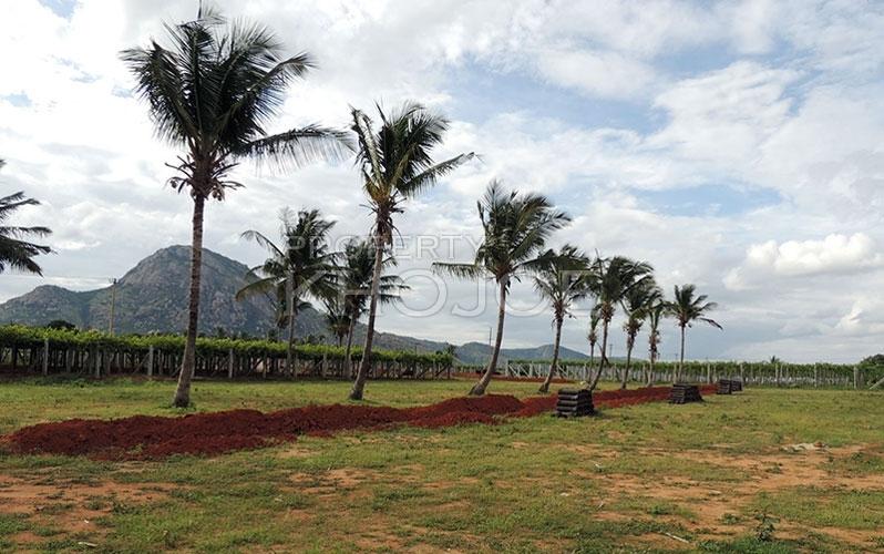 Prashanthi County Bangalore